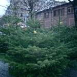 BZ Lexikon(33) 「クリスマス特赦」