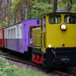 発掘の散歩術(4) - 出発進行!子ども鉄道 -