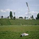 Mauerparkの蚤の市