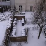 ベルリン氷雪模様(2)