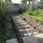 発掘の散歩術(88) 消えたユダヤ人たちの痕跡をたどって —モアビットの2つの場所—